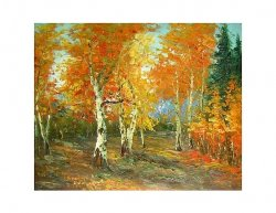 Obraz - Javorový les