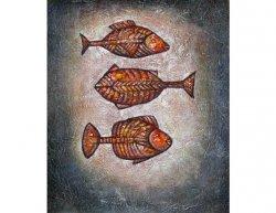 Obraz - Kostnaté rybky