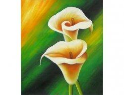 Obraz - Krásné květy
