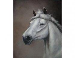 Obraz - Kůň