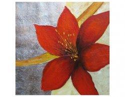 Obrazy - Červený květ