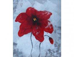 Obrazy - Květ